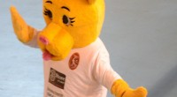 Mascotte Leoncina  Realizzazione mascotte interamente […]