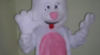 Costume Coniglio Costume realizzato in […]